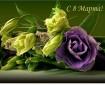 8 марта_открытка (на сайт